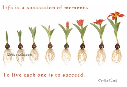 Life is a succession of moments