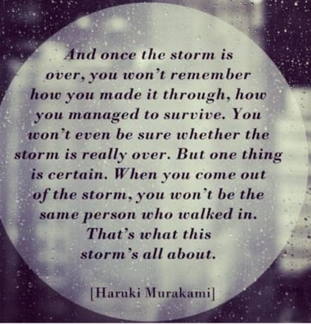 Once the storm is over, you are changed forever.