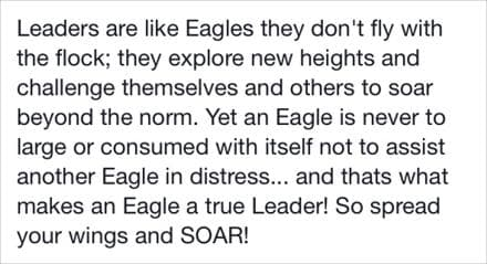 Leaders are like eagles.
